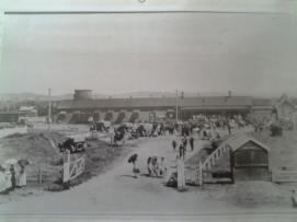 train st-1900's